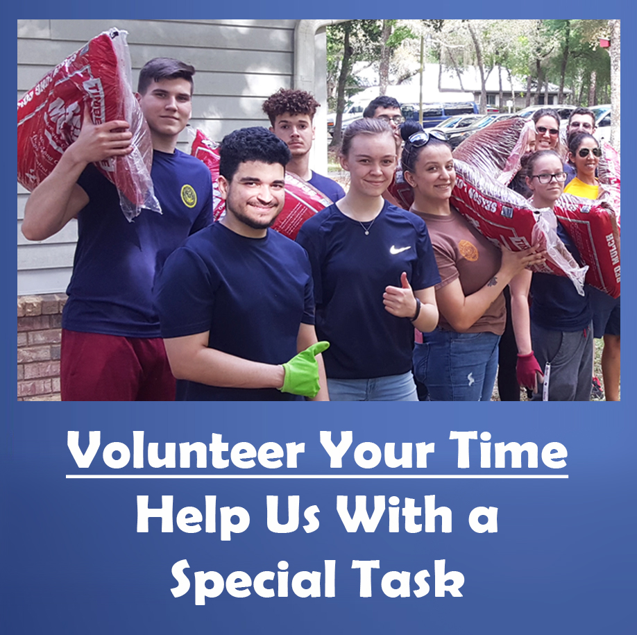 Volunteer at Duvall Homes
